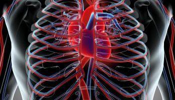Curso-Factores-De-Riesgo-Cardiovascular