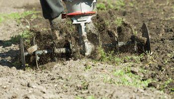 Curso-Manejo-Sanitario-Agrosistema