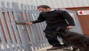 Curso-Tecnico-Seguridad-Privada-Urbanizaciones-Poligonos