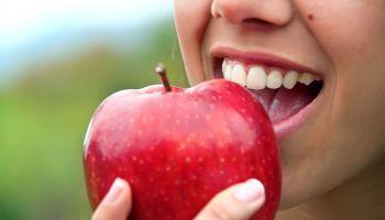Experto-Procesos-Nutricion-Humana