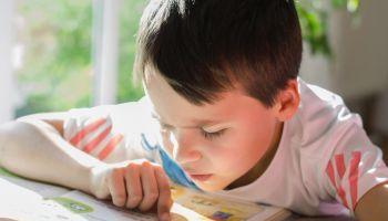 Experto-Programas-Autonomia-Ninos-Necesidades-Educativas-Especiales-Educacion-Social-Salud