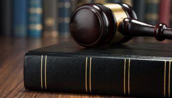 Perito-Judicial-Gestion-Tratamientos-Silvicolas-Online