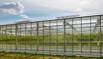 Uf0010-Preparacion-Del-Terreno-Para-Instalacion-De-Infraestructuras-Y-Plantacion-De-Frutales-A-Distancia