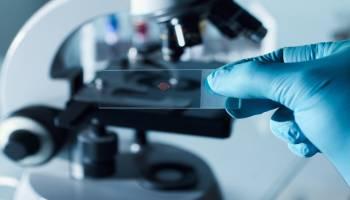 Uf0106-Programas-Informaticos-Para-Tratamiento-De-Datos-Y-Gestion-En-El-Laboratorio-A-Distancia